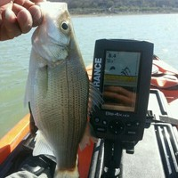 Stillhouse Hollow Lake Fishing Report 02/14/2015