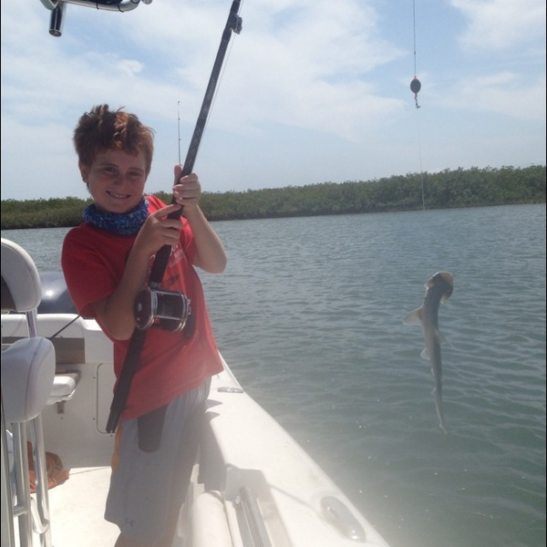 Bonnethead shark new smyrna beach fl fishingscout for New smyrna beach fishing report