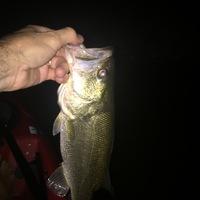 Lake Pflugerville Fishing Report 09/28/2016