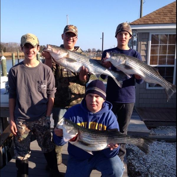Striped bass delaware bay de nj fishingscout for Delaware bay fishing report