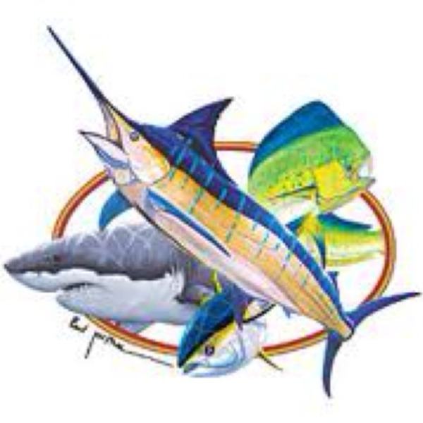 the best dolphin fishing tactics