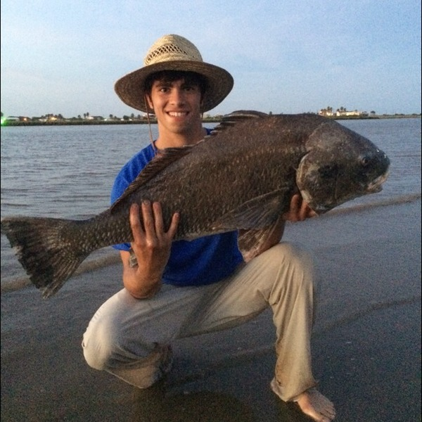 Galveston island beach fishing reports fishingscout for Galveston fishing reports