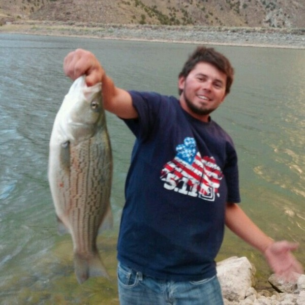 Minersville reservoir fishing reports fishingscout for Willard bay fishing report