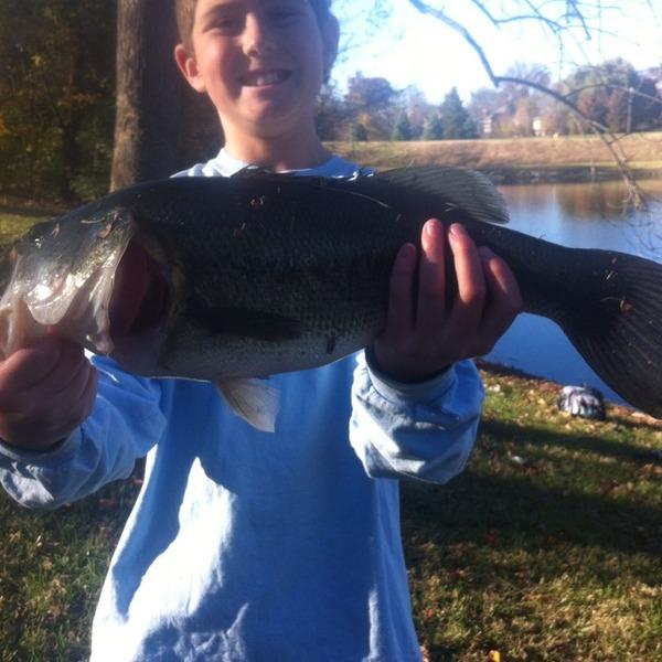 Salt river fishing reports fishingscout mobile app for Otter creek fishing report