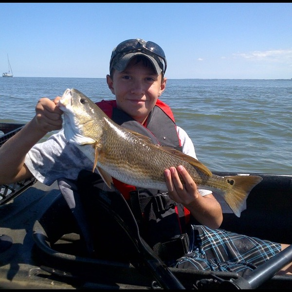 Diascund creek reservoir fishing reports fishingscout for Otter creek fishing report