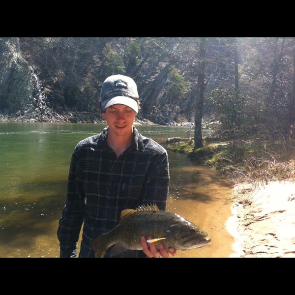 Tva pickwick reservoir 2015 personal blog for Pickwick lake fishing report